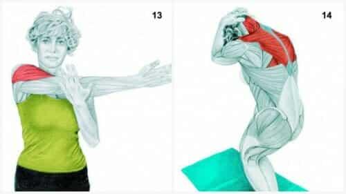 Stretch av axlar och Stående assisterande stretch av nacke