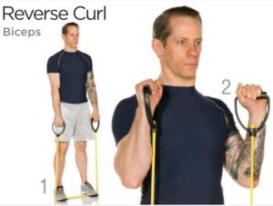 Omvända bicepscurls med gummiband
