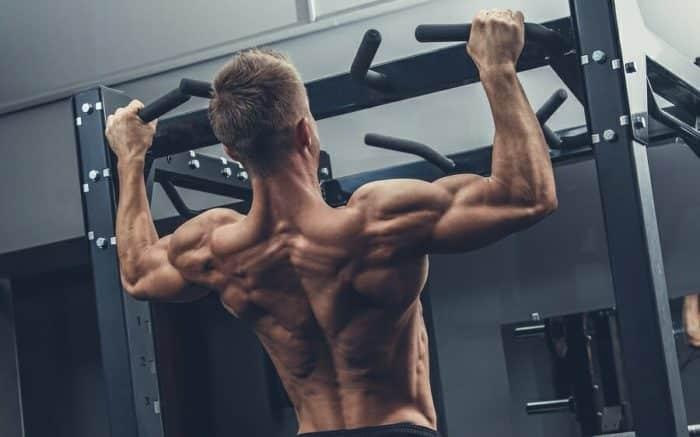 gym tips bygga muskler